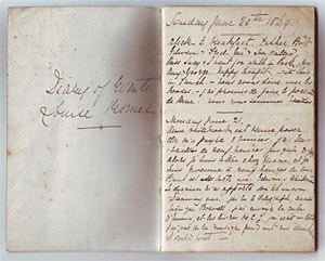 Pages from the diary of Louise Romer (née Goode, later Jopling), 1869